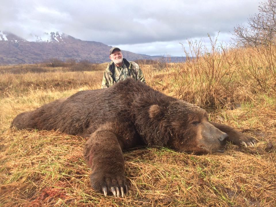 самые большие медведи в мире фото порода для какой