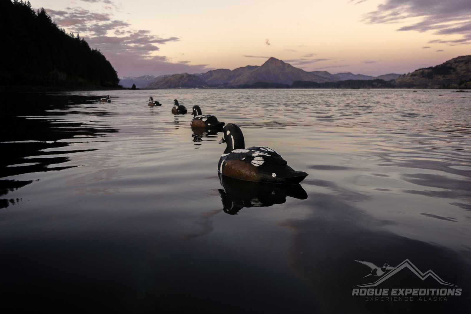 Duck Hunting in Alaska with Rogue Expeditions - photo#15
